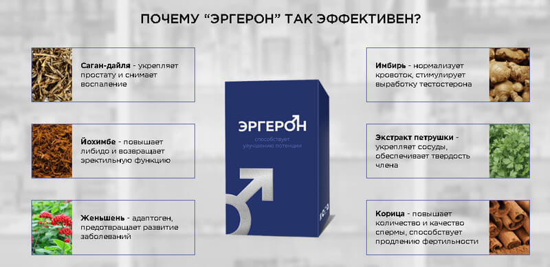 эргерон состав препарата